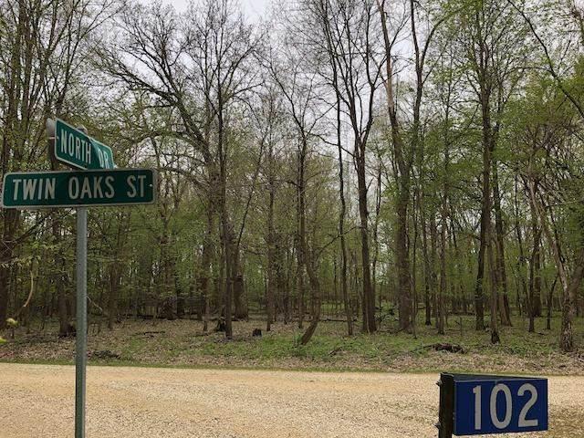 Lot 6 Twin Oaks Street - Photo 1