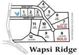 Lot 10 Wapsi Ridge - Photo 6