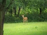 3016 Forrest Meadow Lane - Photo 8