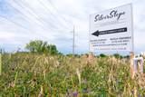 864 Silver Lane - Photo 5