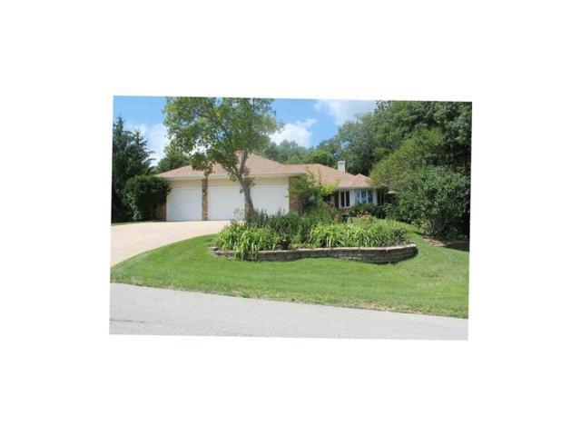 1566 Arapaho Trail, Solon, IA 52333 (MLS #1707419) :: The Graf Home Selling Team