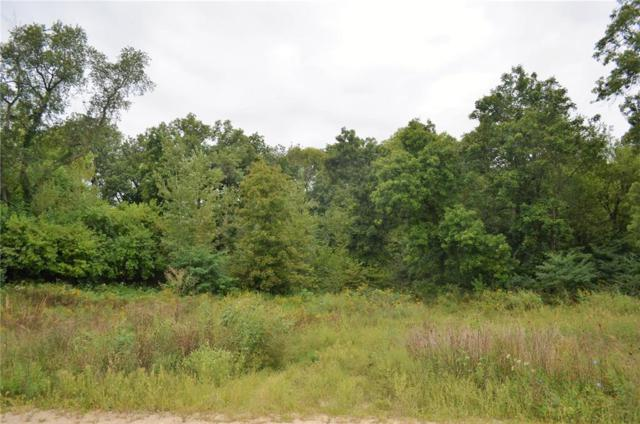 Palisades Access Road, Ely, IA 52227 (MLS #1806346) :: WHY USA Eastern Iowa Realty