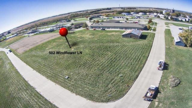 502 Windflower Lane, Solon, IA 52333 (MLS #1806918) :: The Graf Home Selling Team