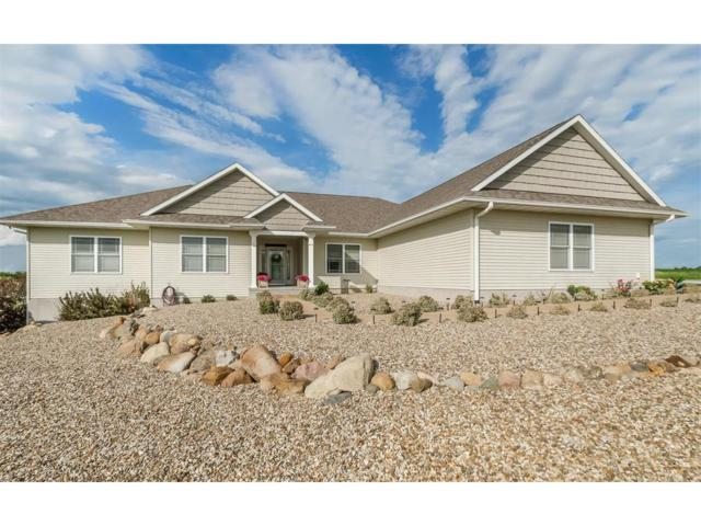 4670 Heins Road, Center Point, IA 52213 (MLS #1706111) :: The Graf Home Selling Team