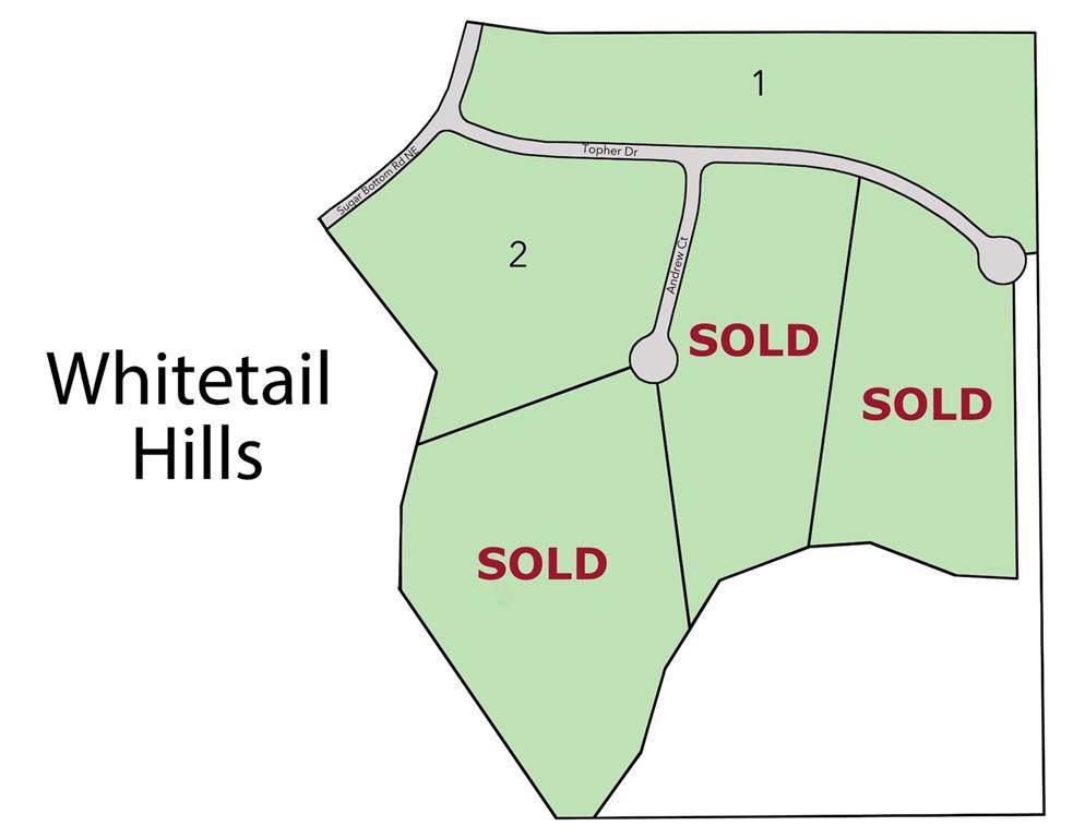 Lot 1 Whitetail Hills Subdivision - Photo 1
