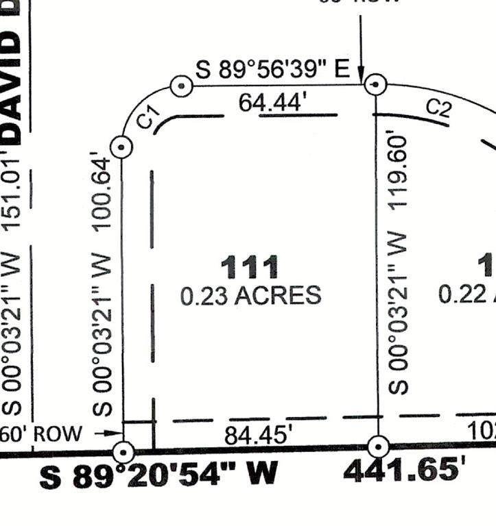 Lot 111 Prairie Acres Part 7 - Photo 1