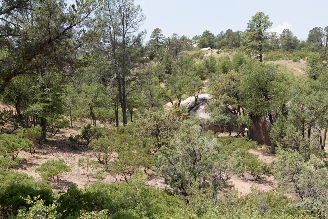 910 Monument Valley Drive - Photo 1