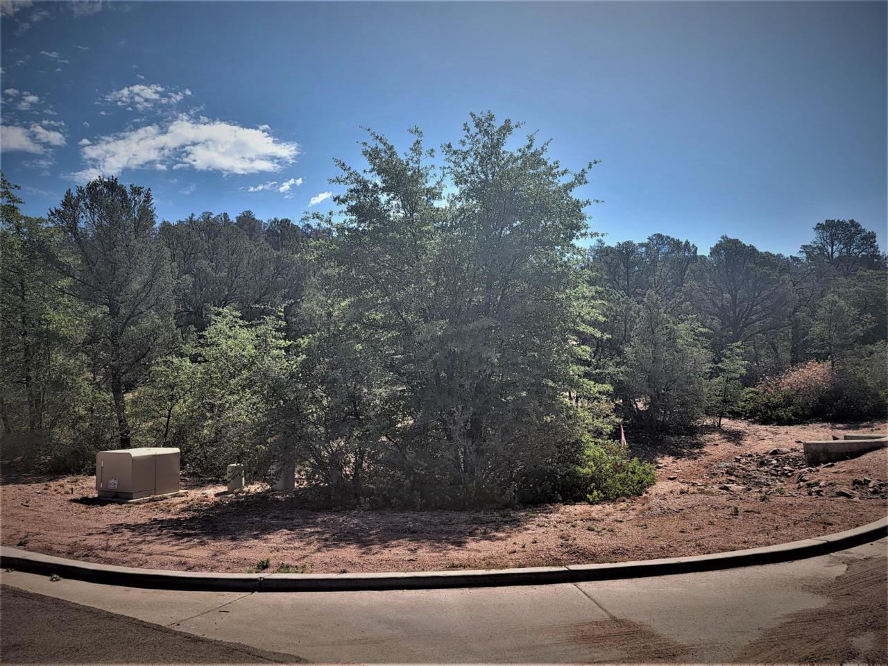 801 Thunder Ridge Circle - Photo 1