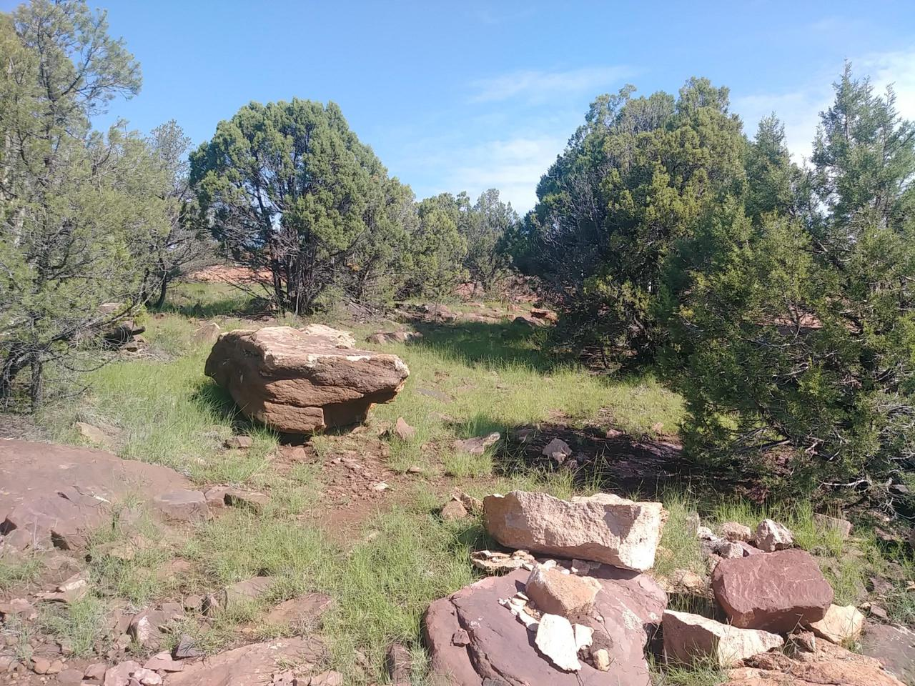 1213 Wagon Trail - Photo 1