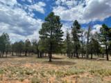 4173 Durango Drive - Photo 1