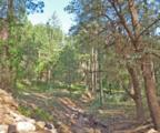 251 Canyon Drive - Photo 44