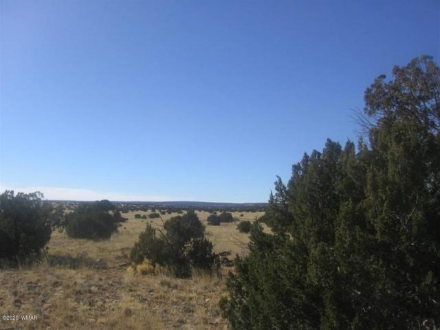Sec 6 Chevelon Retreat, Heber, AZ 85928 (MLS #84703) :: Walters Realty Group