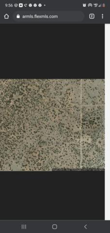 5018 Sidlyn Road, Heber, AZ 85928 (MLS #84906) :: Walters Realty Group