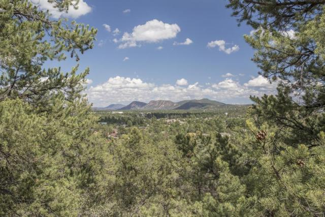 1200 W Airport Road, Payson, AZ 85541 (MLS #84948) :: Walters Realty Group