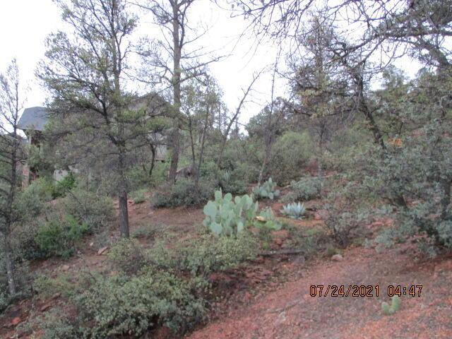 813 Blue Spruce Circle - Photo 1