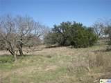 TBD County Road 181 - Photo 15
