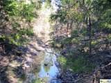 TBD County Road 181 - Photo 3