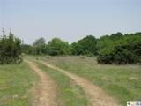 TBD County Road 181 - Photo 4
