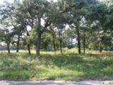 231 Coleto Drive - Photo 1