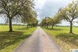 699 County Road 198 - Photo 32