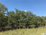 00000 Turkey Tree Trail Road - Photo 1