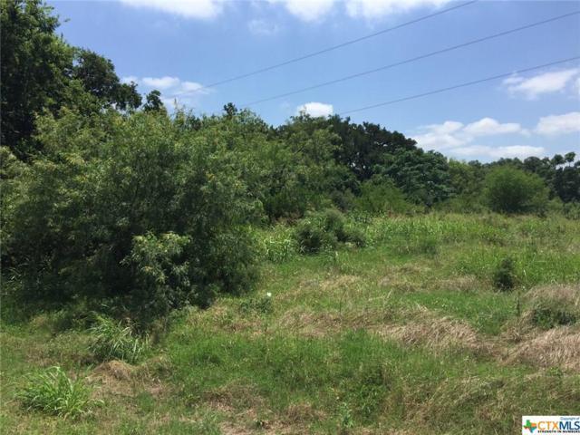 2608 Wild Cat Roost, New Braunfels, TX 78132 (MLS #300818) :: Erin Caraway Group