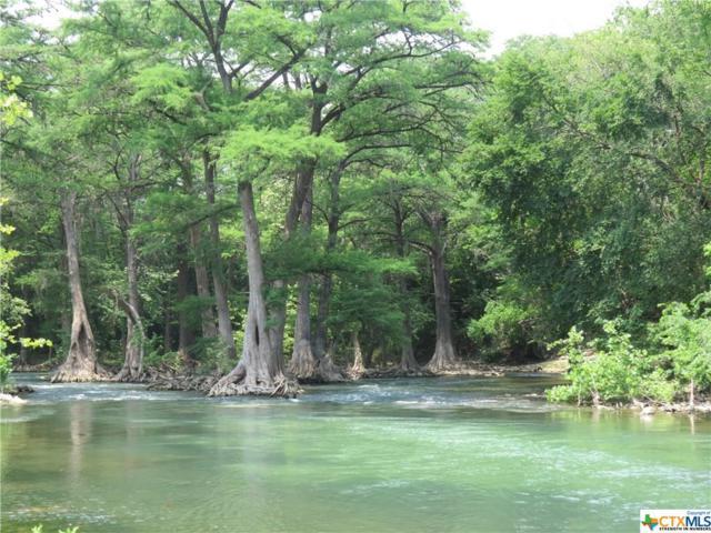 1330 River Place Drive #1, New Braunfels, TX 78130 (MLS #304078) :: Magnolia Realty