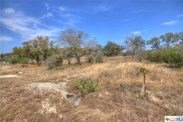 349 Arthur Court, Spring Branch, TX 78070 (MLS #304130) :: Magnolia Realty