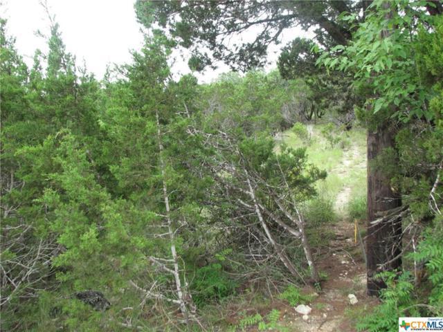 524 Flaman, Canyon Lake, TX 78133 (MLS #304429) :: Magnolia Realty