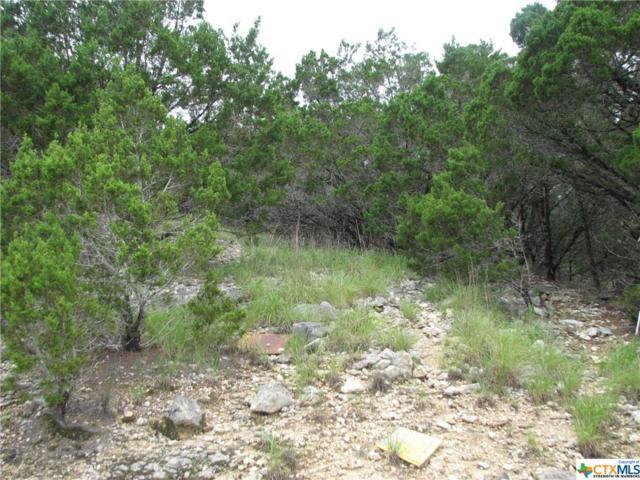 295 Delanoy Drive, Canyon Lake, TX 78133 (MLS #304432) :: Magnolia Realty