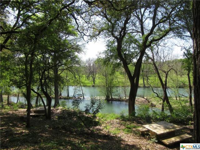 3 Gruene Wald, New Braunfels, TX 78130 (MLS #304472) :: Magnolia Realty