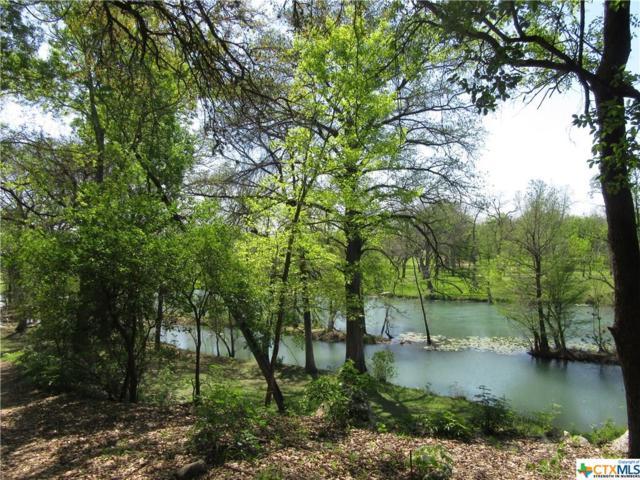 18R Gruene Wald, New Braunfels, TX 78130 (MLS #304528) :: Magnolia Realty