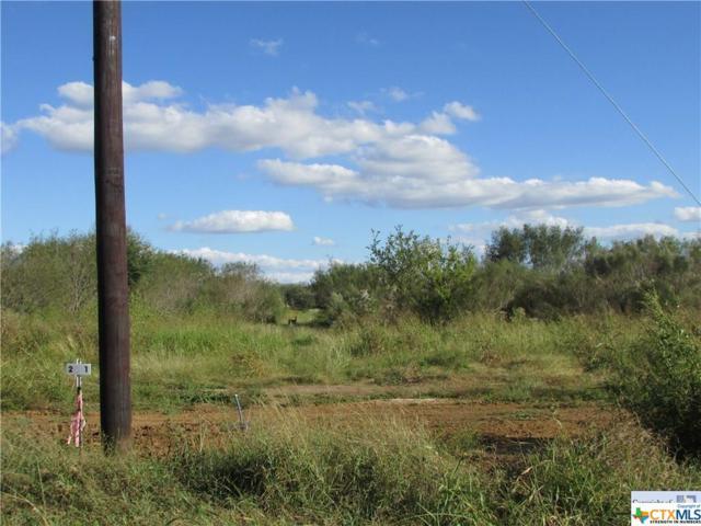 507 Rawhide, Seguin, TX 78155 (MLS #305018) :: Magnolia Realty