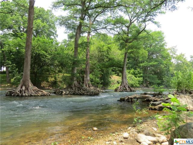 1346 River Place Dr Drive, New Braunfels, TX 78130 (MLS #305190) :: Magnolia Realty