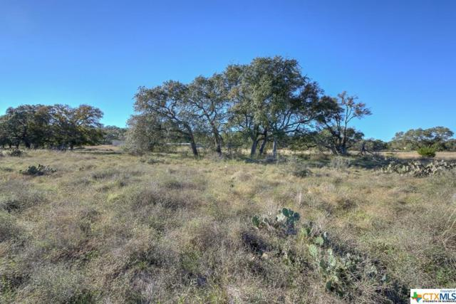 0000 Natures Way, New Braunfels, TX 78132 (MLS #306303) :: Magnolia Realty