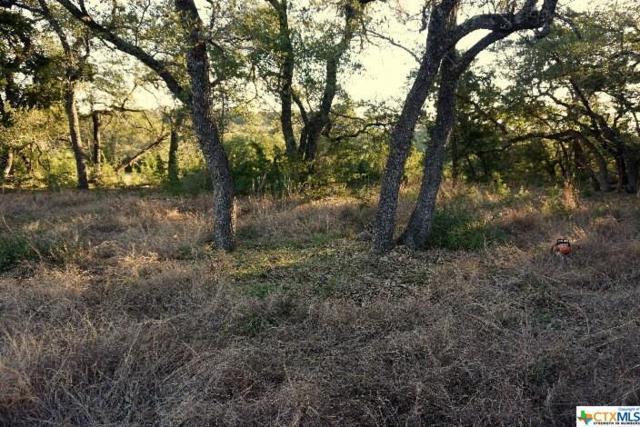 1330 Ensenada, Canyon Lake, TX 78133 (MLS #306582) :: Magnolia Realty