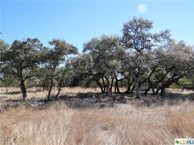 1141 Hidden Forest, Canyon Lake, TX 78133 (MLS #307274) :: Magnolia Realty