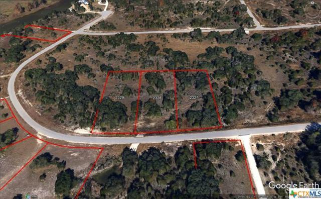 306 River Cliff, Spring Branch, TX 78070 (MLS #307475) :: Magnolia Realty