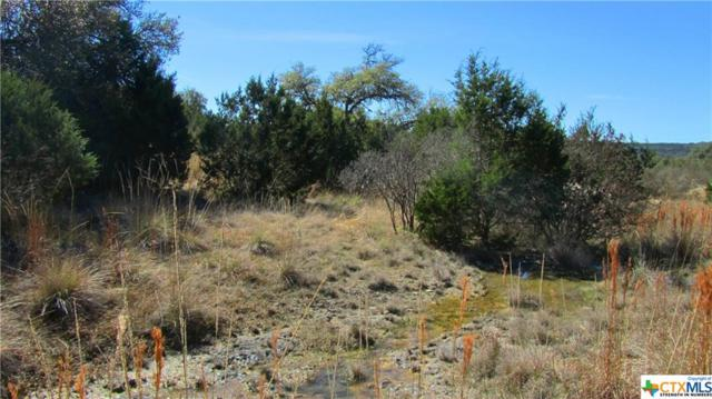 294 River Cliff, Spring Branch, TX 78070 (MLS #307479) :: Magnolia Realty