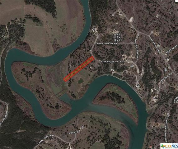 329 River Cliff, Spring Branch, TX 78070 (MLS #307483) :: Magnolia Realty