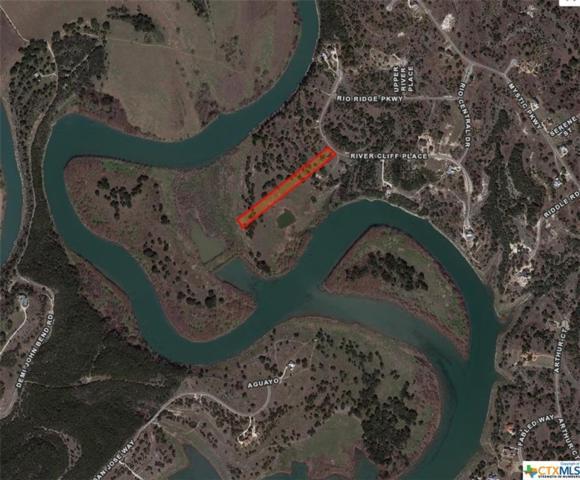 323 River Cliff, Spring Branch, TX 78070 (MLS #307485) :: Magnolia Realty