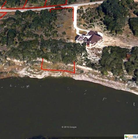 293 River Cliff, Spring Branch, TX 78070 (MLS #307489) :: Magnolia Realty
