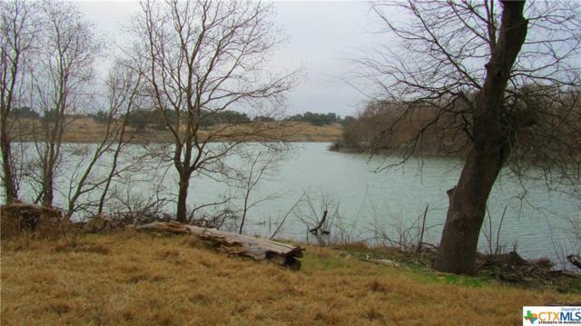 317 River Cliff, Spring Branch, TX 78070 (MLS #307494) :: Magnolia Realty