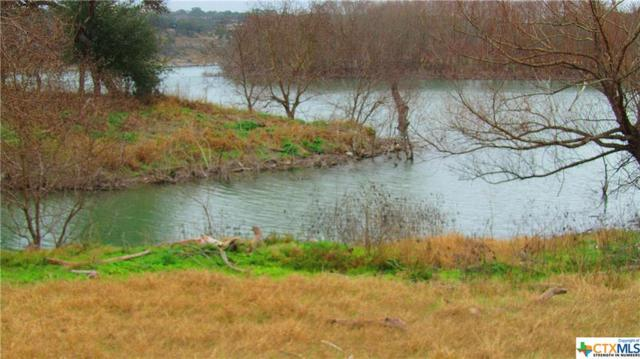 311-329 River Cliff, Spring Branch, TX 78070 (MLS #307495) :: Magnolia Realty