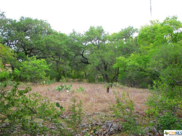1321 Palmetto, Spring Branch, TX 78070 (MLS #307831) :: Erin Caraway Group