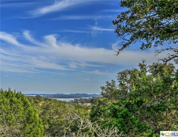 334 / 346 Blackbird, Spring Branch, TX 78070 (MLS #308023) :: Magnolia Realty