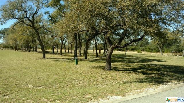 1781 Bella Vista, Canyon Lake, TX 78133 (MLS #308728) :: Magnolia Realty