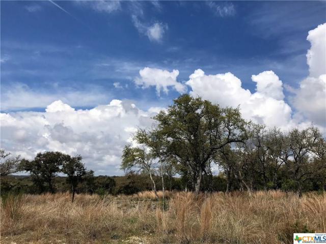 1118 Hidden Forest, Canyon Lake, TX 78133 (MLS #309396) :: Magnolia Realty