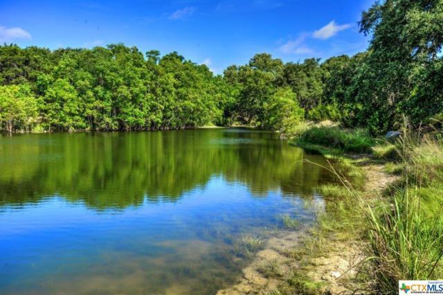1520 Canyon Lake Drive, Canyon Lake, TX 78133 (MLS #309590) :: Vista Real Estate