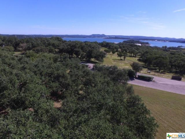 582 Kings Point, Canyon Lake, TX 78133 (MLS #310691) :: Magnolia Realty